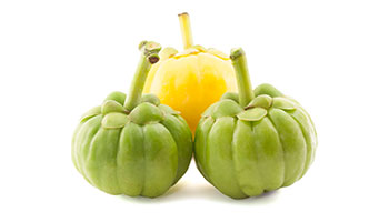 ingredient-garcinia-cambogia